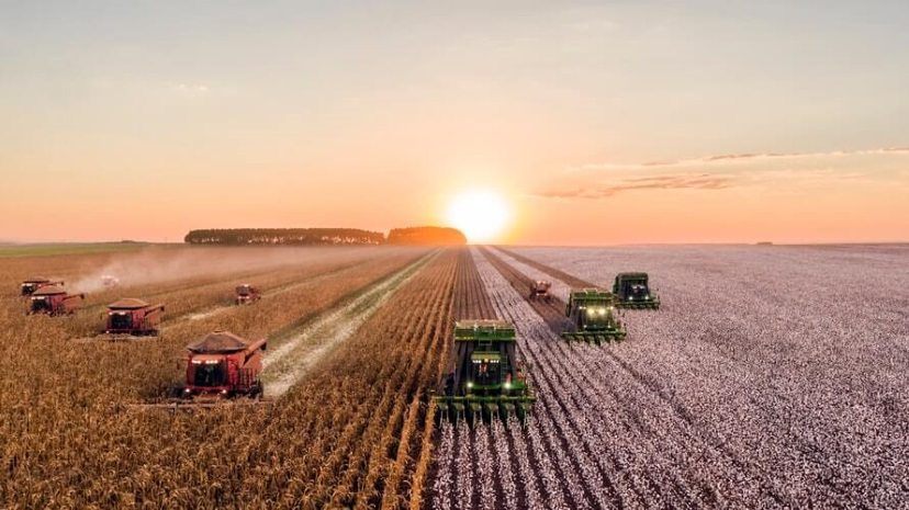 COVID 19 | Medidas de Apoio à Agricultura