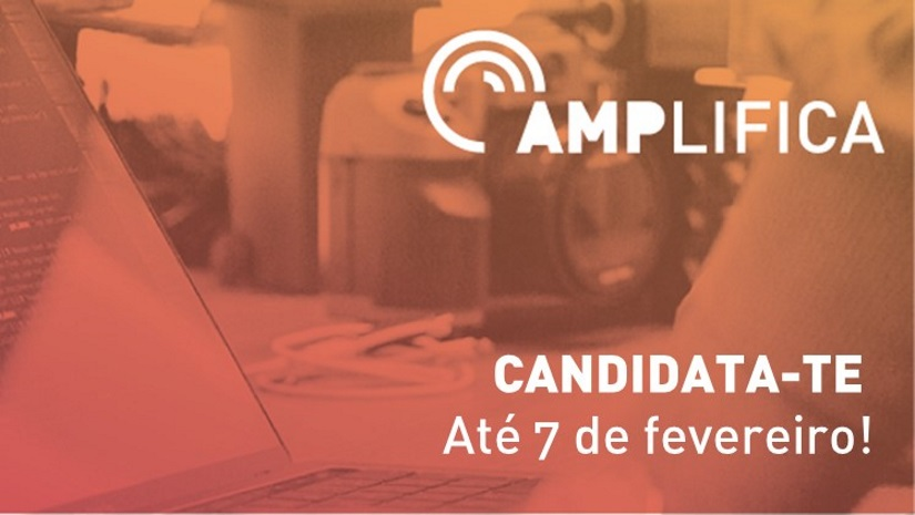 DO YOU WANT TO CHANGE THE WORLD AND YOU DON'T KNOW HOW? APPLY TO AMPLIFICA
